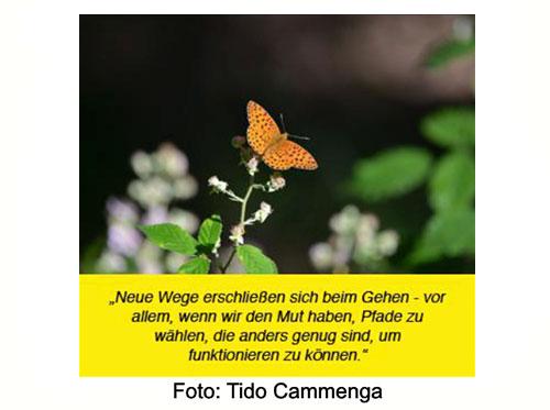 VEU - Timeline Bild mit Schmetterling und Spruch